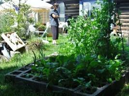 Kris Reviews the Kitchen Garden @ martincooney.com