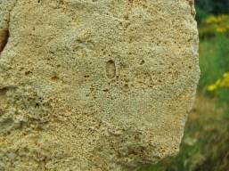 The Secret Life of Stone @ martincooney.com