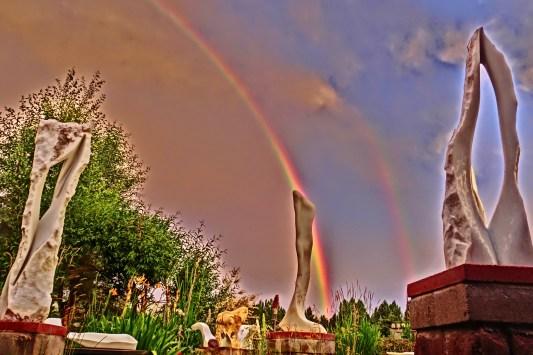 Cat Walk with Rainbow