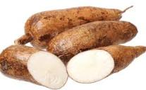 Tapioca provenant du manioc pour le PÃO DE QUEIJO PAIN DE FROMAGE