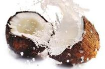 Lait de coco pour la Soupe Woolloomooloo