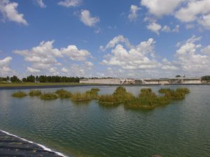 Martin Ecosystems Floating Treatment Wetlands stormwater research