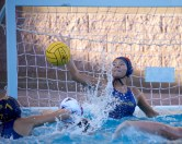 Alhambra vs College Park Girls Waterpolo Photos by Mark Fierner ( Martinez News-Gazette )