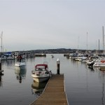 Marina Trust Lands Use Plan moves on to City Council