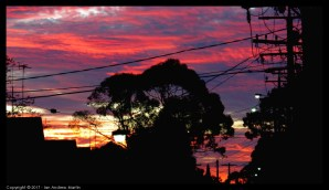 This time a focus on the criss-crossing nature of the wires that drive so much of human life today. Suffused with nature in the background. Again taken at 21:00 hours, near last light.