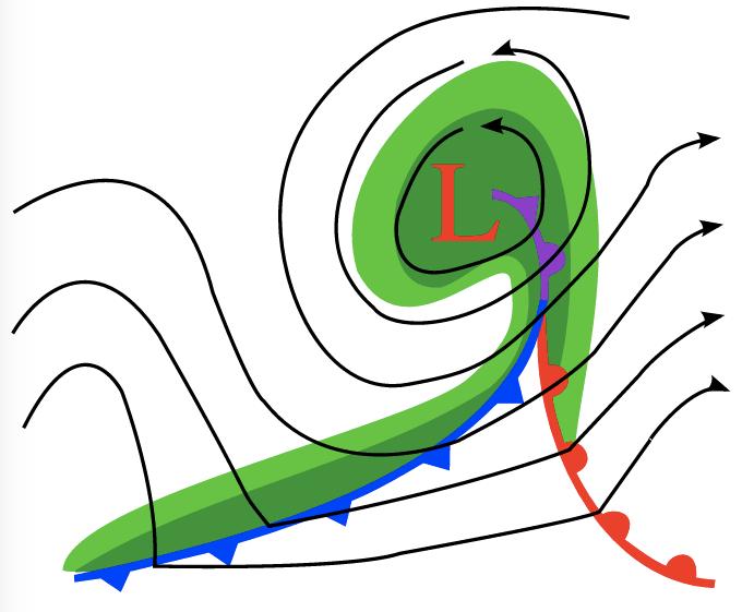 Klassisk kall och varmfront kring ett lågtryck på mellanbreddgraderna. När kallfronten hinner ikapp varmfronten bildas en ockluderad front. (Wikipedia)