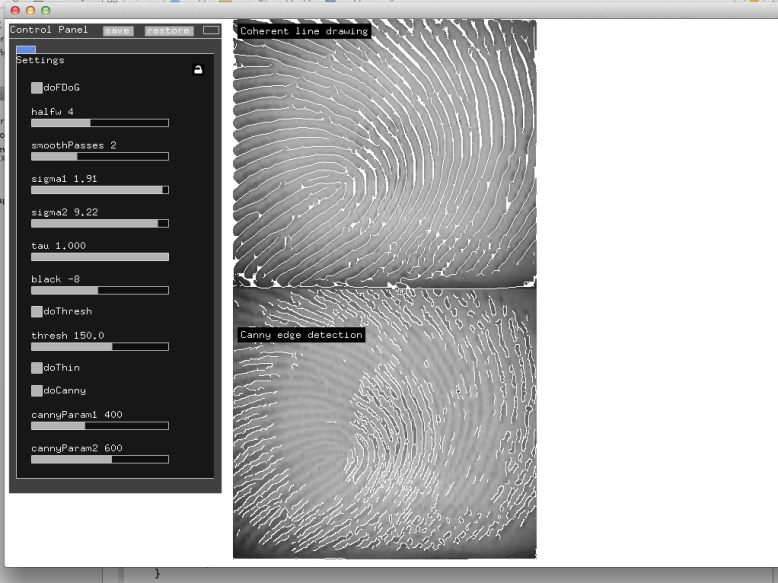 Searching for the right params to detect lines in a fingerprint image