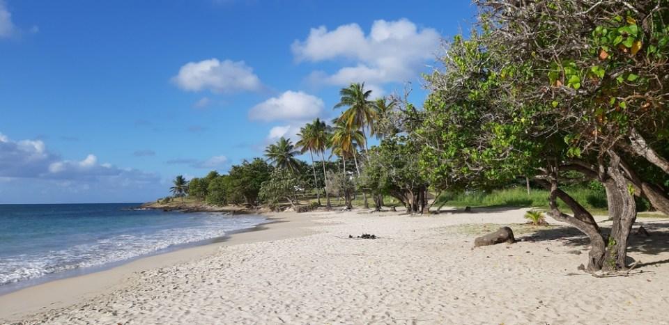 Saint-Luce Martinica - le spiagge più belle