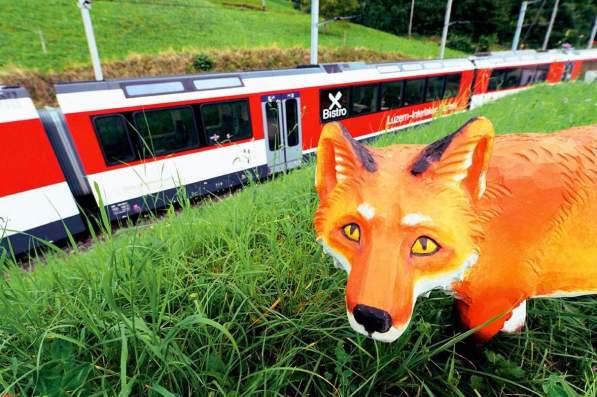 Globi-Express - Zentralbahn - Fuchs