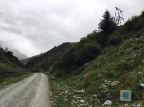 Auf dem Weg auf die Alp