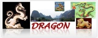 DocTitle Dragon