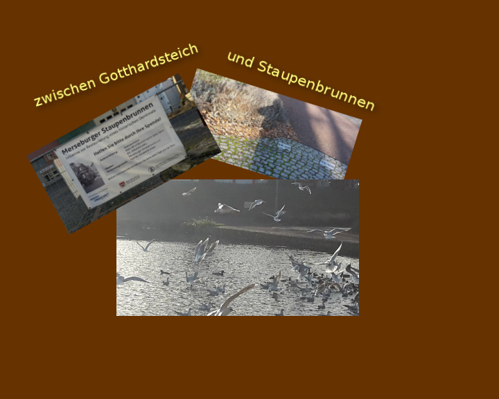 Merseburger Streifzüge #1 – zwischen Gotthardsteich und Staupenbrunnen