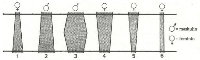 L75-2