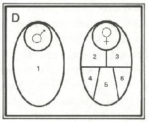 L76-5