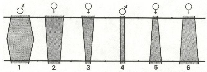 L76-8