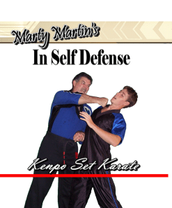 Kenpo Self Defense Technique Training