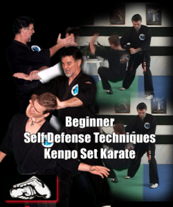 Beginner Self-defense Techniques Kenpo Set Karate