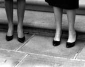 L43824 Four lady's legs