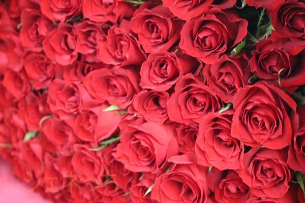 100本のバラ日比谷花壇