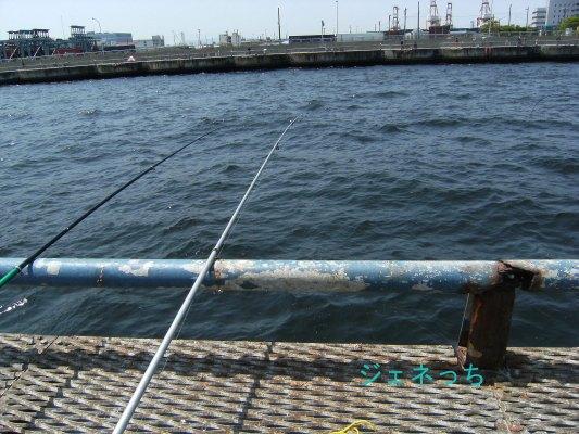本牧海釣り①