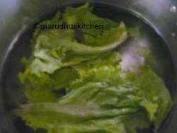 LETTUCE IN COLD WATER