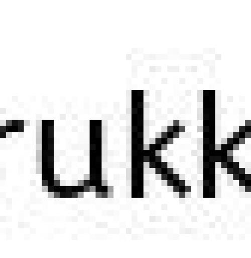 山本寛斎の娘は山本未來!