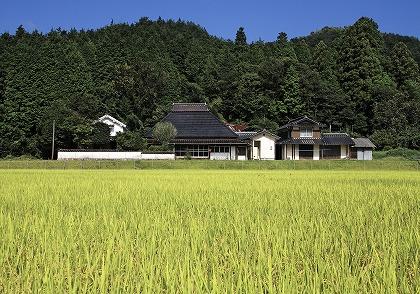 日本の住宅が、外国と比較して耐用年数が短い5つの理由