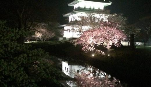 【函館】五稜郭公園の桜と薄桜鬼聖地巡礼の旅~前編~2015年(再投稿)