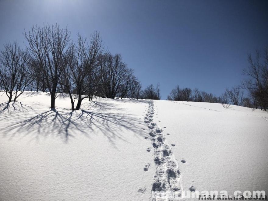 冬の北海道雪景色