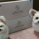 ニトリのホテルスタイルのペットベッド買ってきた