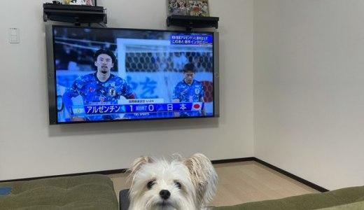 サッカーオリンピック代表テレビ観戦