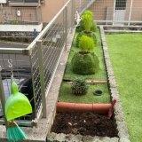 今年の花壇作りはコキア畑