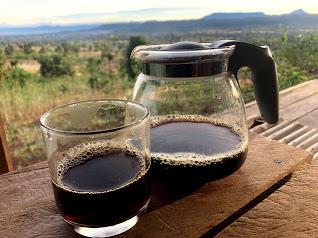 アラビカ?リベリカ?2月21日にラオスの自然栽培コーヒーが丸杉にやってきます