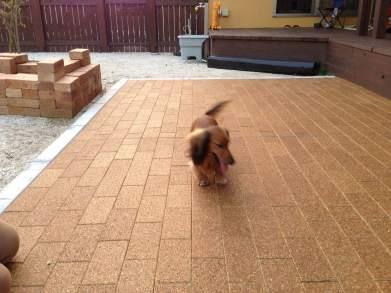 自然素材で作る愛犬の床