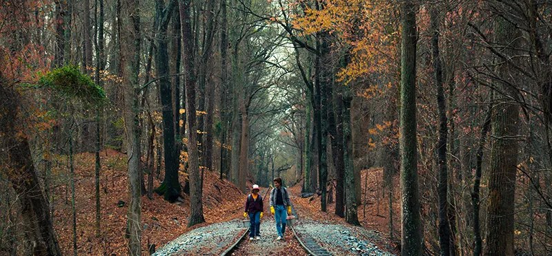 Screenshot from Stranger Things season two showcasing autumn vibes through the trees. Available exclusively on Netflix.