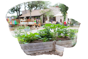garden at preschool