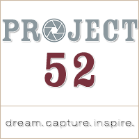 Project 52 Button _ 200px