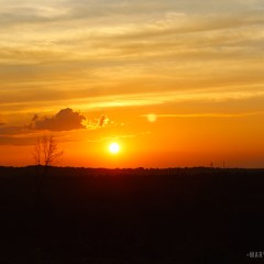 IMG_2700_Sunset_BLOG