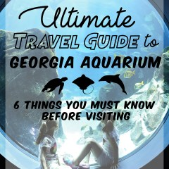 Ultimate Travel Guide to Georgia Aquarium for an Epic Spring Break
