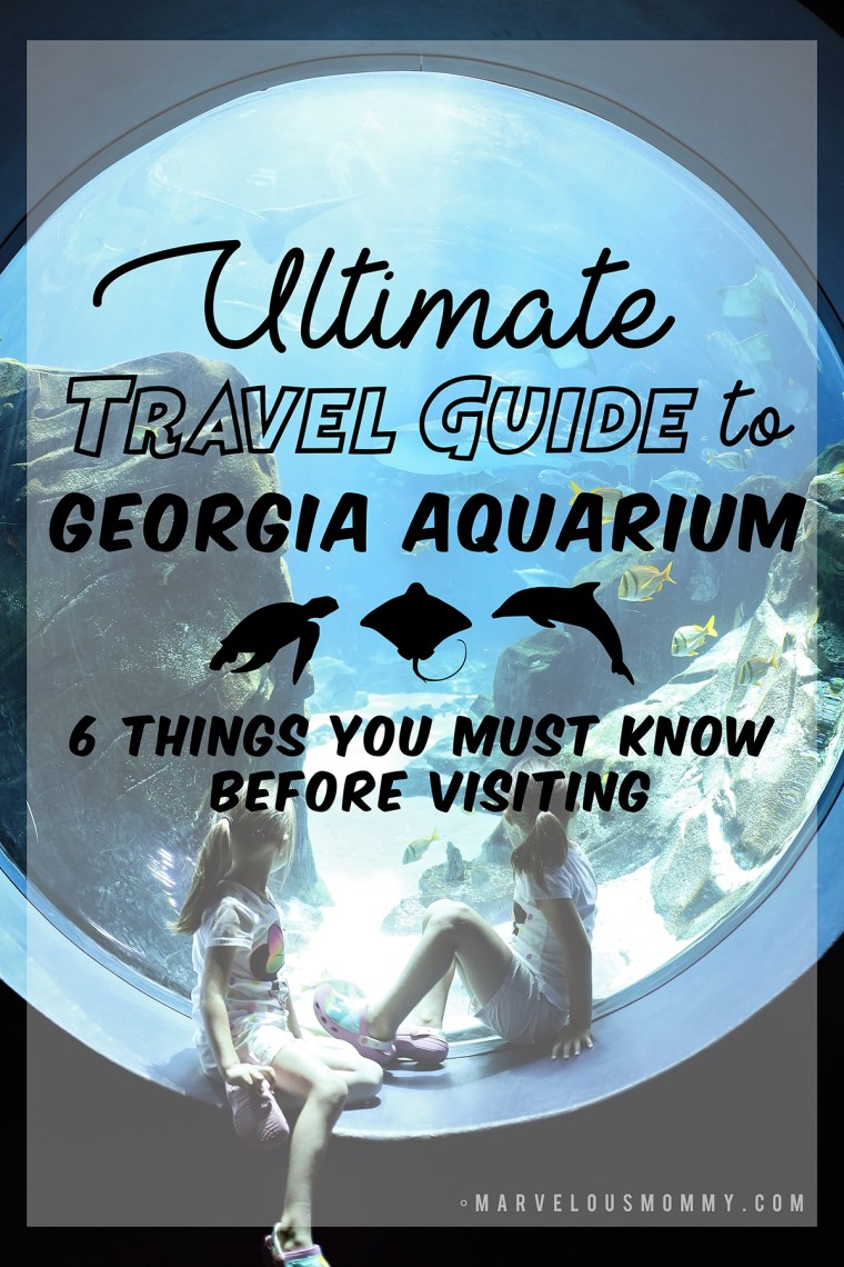 Search Results For Georgia Aquarium Marvelous Mommy