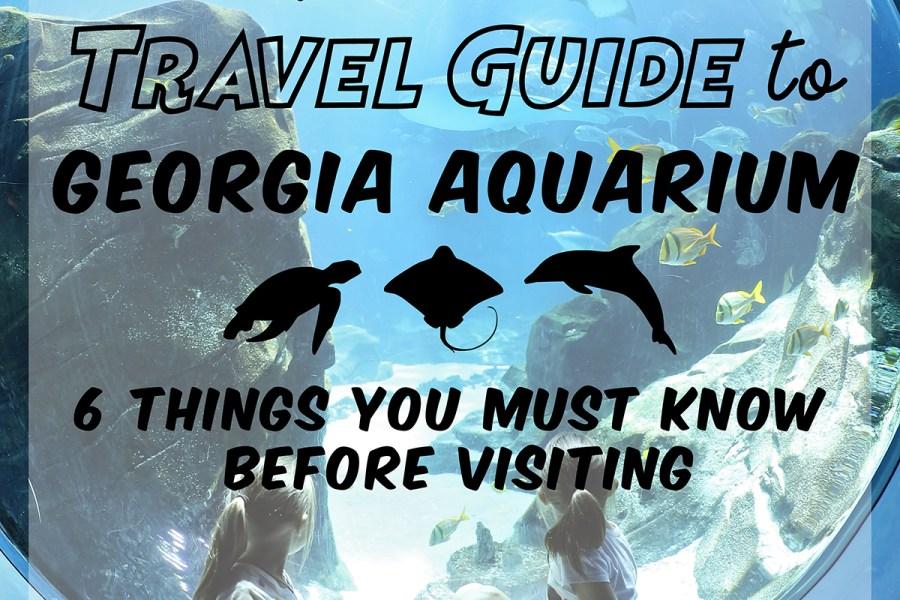 Ultimate Travel Guide to Georgia Aquarium for an Epic Spring Break