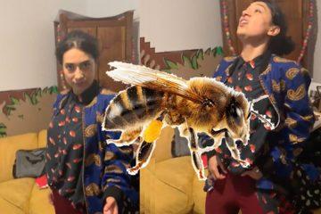 flor amargo video clase catartic pop facebook 2019