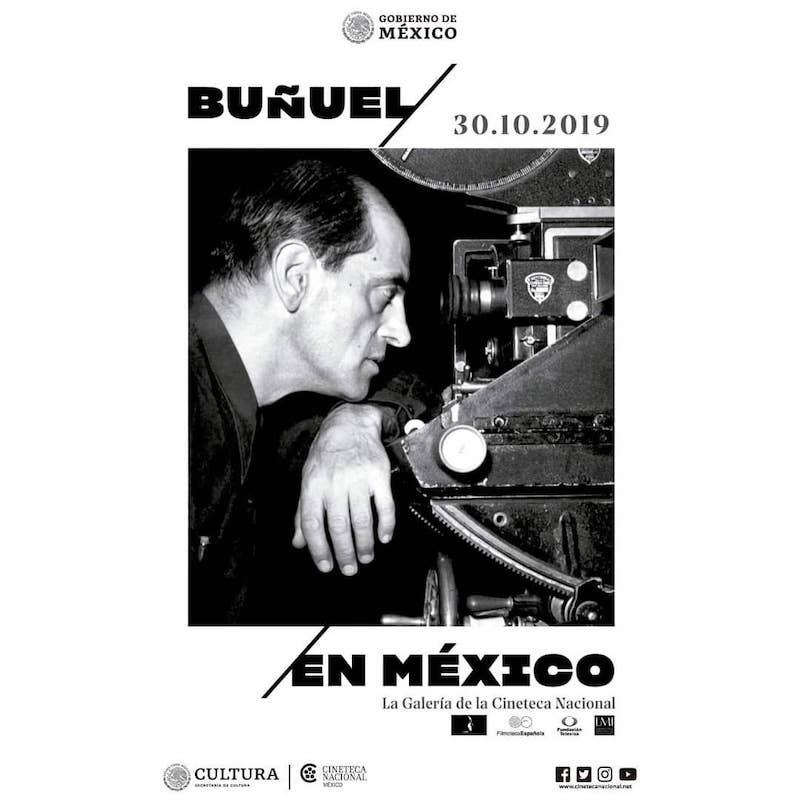 Resultado de imagen para exposicion buñuel en cineteca