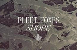 fleet-foxes