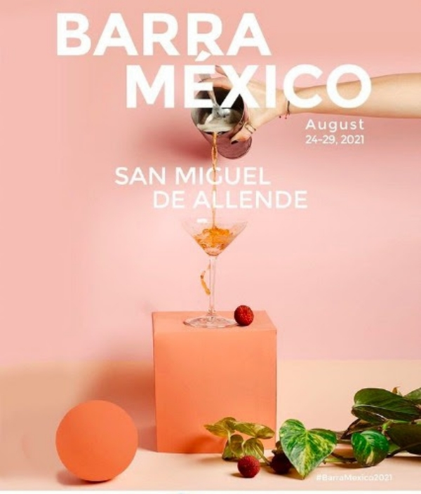 barra-mexico-san-miguel-de-allende-ara-carvallo-paula-garcia