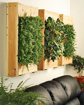 Green UP with Fresh Wall Planters