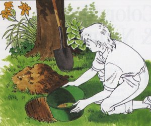 Designing Your Own Garden (Part II)