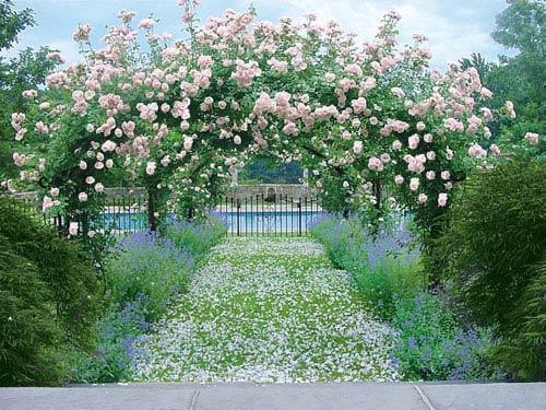Bid Farewell to Summer With a Stroll Through an English Garden