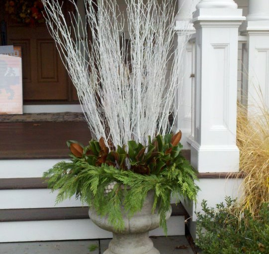 winter urn with white birch branches