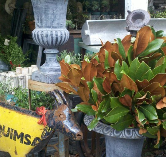 Cast Iron Urns Customized for a Unique Garden Style